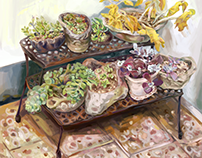 Flower pots (Illustration)