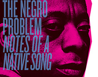Stew & The Negro Problem Concert Ad