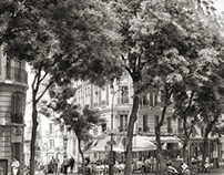 Paris / BW photography