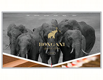 UI/UX - Bongani Cigars