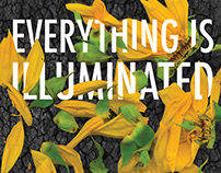 Everything is Illuminated Book Cover Redesign