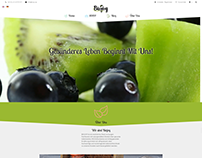Biojoy.eu Bio food e commerce website developing.