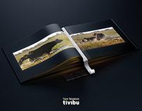 Türk Telekom Tivibu - Pause&Play
