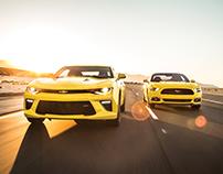 Bienvenida a Mustang
