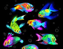 NEON fish !