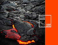 COLOR OF THE YEAR 2020: LUSH LAVA