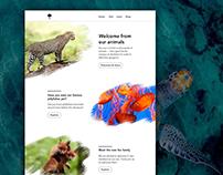 DailyUI | Landing Page