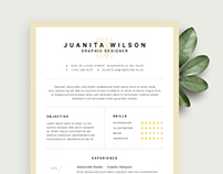 Clean Resume Free Template