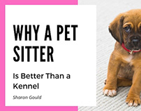 Why a Pet Sitter is Best | Sharon Gould