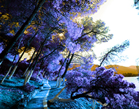 IR#3 Poros island infrared picture