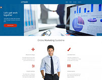 Business WordPress theme with WCAG 2.0 compliance