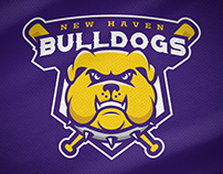 New Haven Bulldogs - Rebrand