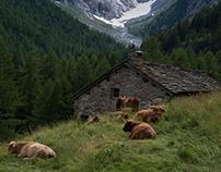 Val Malenco