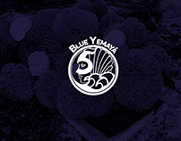 Blue Yemayá, Web Design - México