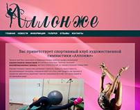 """Спортивный клуб """"Аллонже"""""""