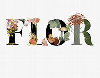 Floral Alchemy Typography Workshop