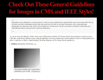 CMS and IEEE Style Image Formatting Best Practices