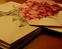 Artist Book.