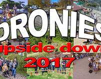 Dronies 2017 upside down