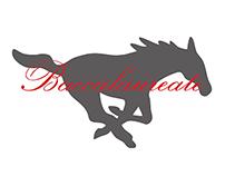 2015 Baccalaureate Program