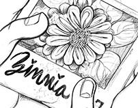 Zinnia Comic