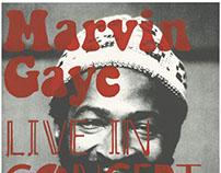 Marvin Gaye Screen Print