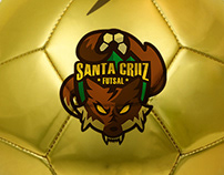 Logo for Futsal Team
