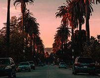 Vision Zero Los Angeles Website &Data Viz