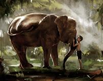 Elephant and boy