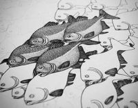Piranhas & Caiman