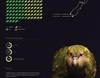 Kakapo Infographic Poster