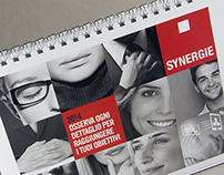 Synergie 2014