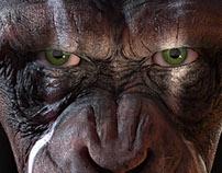 Bad Ape / warpaint version