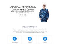Private security website