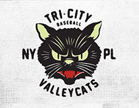 Alternative ValleyCats Brand Concept