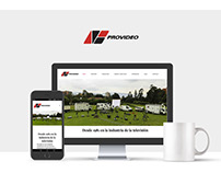 Provideo TV Web Design