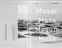 Mosar – Snorri Baldursson