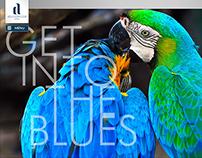 WEB: Hotel Azul Ocean Club