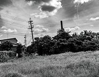 August (Monochrome)