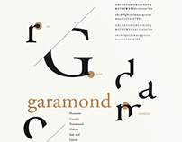 Type Anatomy Poster Series