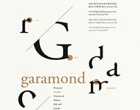 Type Anatomy Poster Series