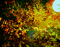 Autumn smile.