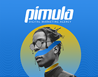 Pimula Agency - Social media theme 2018