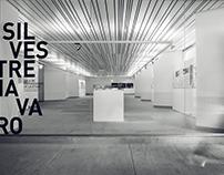 Silvestre Navarro Exhibition
