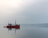 Vejlefjord Haze