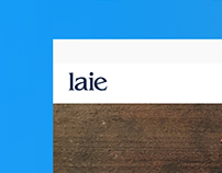 WEB PROJECT LIBRARY LAIE