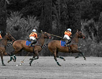 Action Sequence - Polo Player