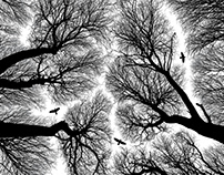 Birds & Branches (2015)
