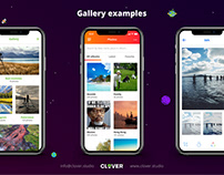 Gallery examples