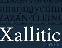 Xallitic (2011)
